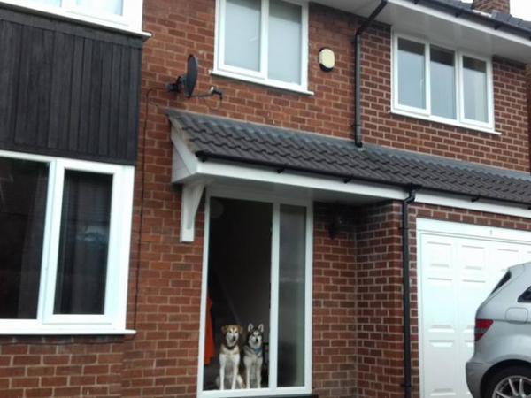 Housesitting assignment in Bramhall, United Kingdom