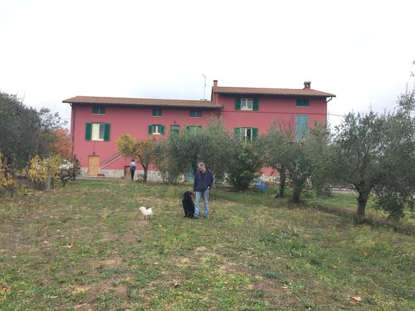 Housesitting assignment in Tuoro sul Trasimeno, Italy