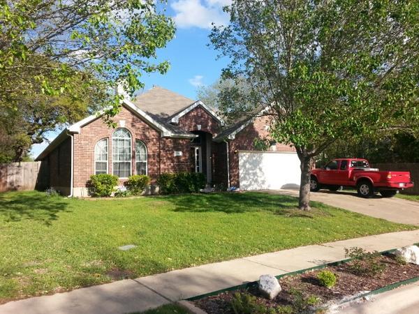 Fantastic Pets, Amazing House - come visit Austin, TX!