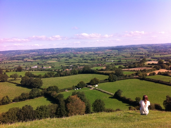 Pet/House Sitter needed for house in lovely Somerset.