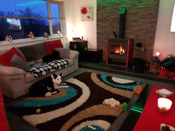Housesitting assignment in Camelford, United Kingdom