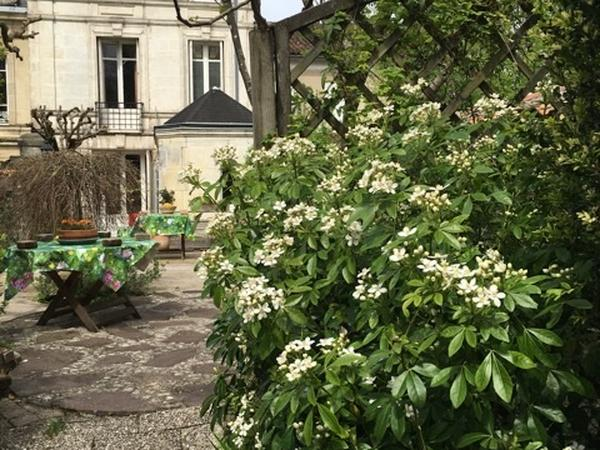 Housesitting assignment in Cognac, France