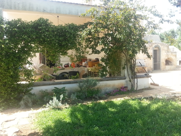 Housesitting assignment in Ostuni, Italy