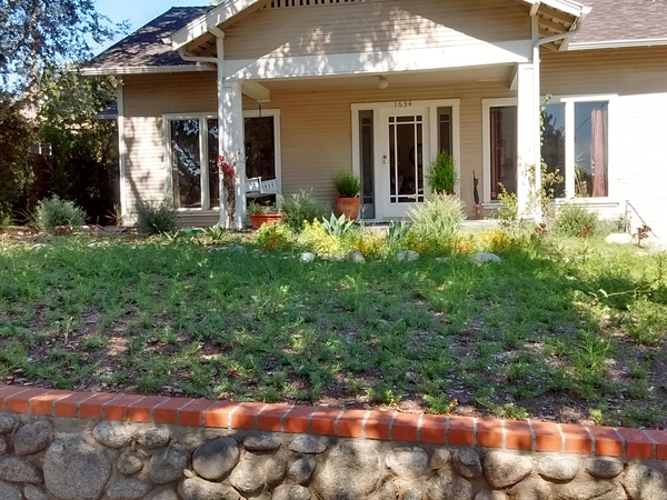 Housesitting assignment in Pasadena, California, United States