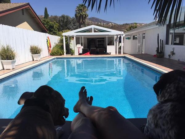 Housesitting assignment in Spring Valley, California, United States