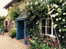 Housesitting assignment in Axminster, United Kingdom - Image 5
