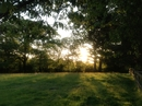 Housesitting assignment in Axminster, United Kingdom - Image 2