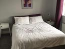 Housesitting assignment in Corofin, Ireland - Image 2