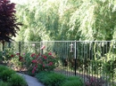 Housesitting assignment in Sacramento, CA, United States - Image 3