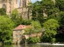 Housesitting assignment in Durham, United Kingdom - Image 2