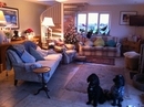 Housesitting assignment in Oundle, United Kingdom - Image 2