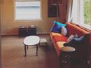 Housesitting assignment in Victoria, British Columbia, Canada - Image 1